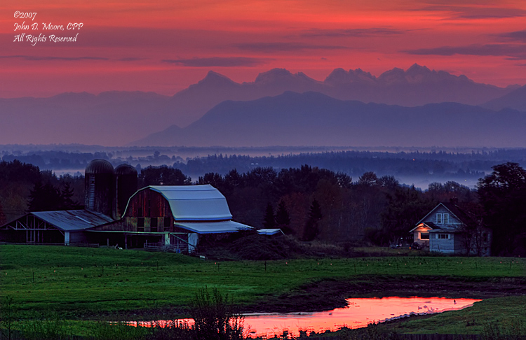 Sunrise at a Ferndale Dairy farm
